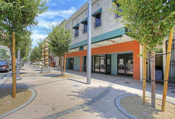 Exterior photo of 1250-1252 Fulton Street. Two story office-retail building. Large sidewalk, outdoor sculpture of stacked river rocks. Sidewalk lined with small, young trees. Building painted orange and turquoise on first level.