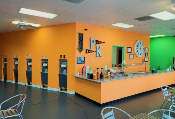 Yogurt shop business for sale. Interior photo of front counter and yogurt dispensers. Painted bright colors, orange and lime green,