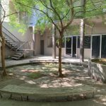 Picture of courtyard. Benches surrounding trees.